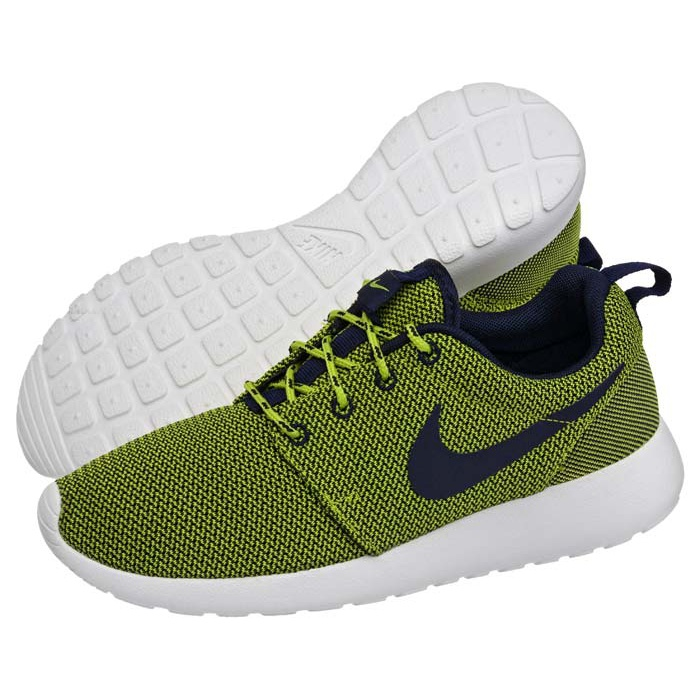 uk availability 49008 58c43 Buty Nike WMNS Roshe Run 511882-304